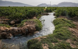 شاخص بهرهبرداری از منابع آبی یک فاجعه است