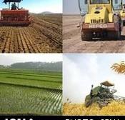 از بین بردن آب و خاک با کود و سم غیرمجاز