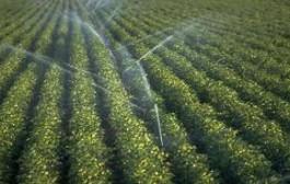 اختصاص ۳۰۰ میلیارد ریال به طرحهای آبیاری تحت فشار یزد