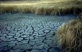۱۰ روش عملی برای مقابله با بحران آب