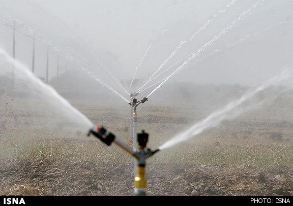 چگونه در خشکسالی دامداری کنیم؟