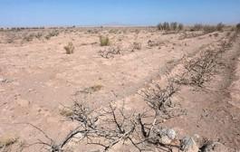 وزارت نیرو، مقصر اصلی کم آبی در کشور