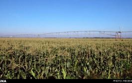 افزایش راندمان آبیاری، راهکاری برای مقابله با کمبود آب