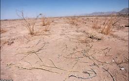 خشکسالی بر ایران سایه انداخته است