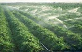 فاضلاب مجتمعهای مسکونی را به آب کشاورزی تبدیل میکنیم
