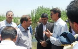 وضعیت منابع آب کازرون بررسی شد