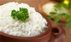 صرفهجویی ۲۵۰ میلیون مترمکعب آب در آبیاری شالیزارها/ ۷۳۰ هزار تن برنج در گیلان تولید میشود