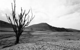 زنگ بحران آب در ۲۹۴ دشت کشور