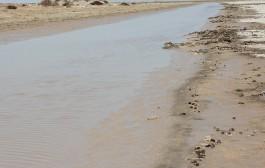 از سیلاب ساختگی تا قطع جریان آب به هامون