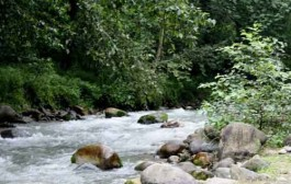 کشت گیاهان آبدوست یکی از علل بروز بحران آب در لرستان