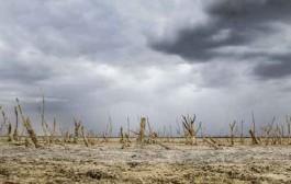 عقربه منفی بارشها در ۱۹ استان کشور