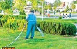 آبفا گزارشی از تخلف آبیاری پارکها اعلام نکرده است