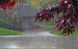 متوسط بارندگی ۱۵ ساله کشور به ۲۰۳ میلیمتر رسیده است