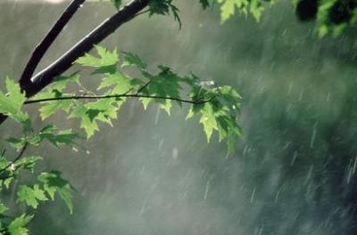 میزان بارش در کشور در دراز مدت ۲۱ درصد کاهش دارد