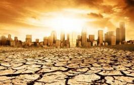 شاخ آفریقا خشک می شود