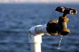 آب بزرگترین چالش پیش روی مشهد