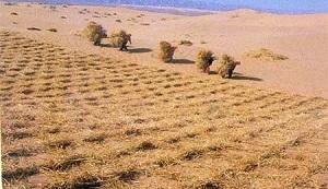 هشدار رئیس جمهور کلمبیا درباره خشکسالی و بحران آب