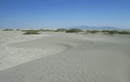 کاهش ۶۹ درصدی بارشها در حوضه دریاچه ارومیه