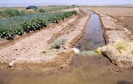 بحرانی بودن وضعیت آب در سه دشت استان البرز