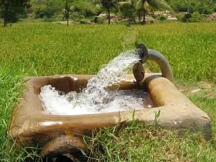 چاههای آب کشاورزی زرندیه در استان مرکزی دو ماه خاموش میشود