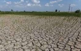 خشکسالی فارس در مسیر بحران