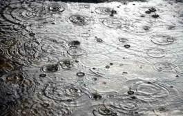 باران پاییزی کشور را سیراب کرد