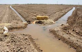 اراضی خرد تهدیدکننده منابع آبی خراسانشمالی