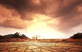 هوا، آب و تنوع زیستی به مناظره گذاشته میشوند