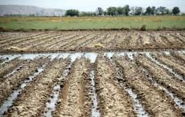 اجرای بیش از ۳۰۰ پروژه در بخش آب و خاک همدان
