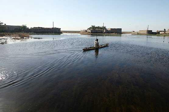 دریای خزر غرق در نیترات و فسفات
