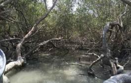 احداث تصفیهخانههای فاضلاب گامی در جهت حفاظت از محیط زیست