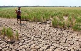 بحران آب در شهری که ۸۰درصد مردمش کشاورزند