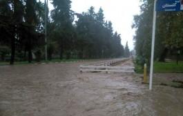 آبرسانی به هشت روستای شهرستان کیار مختل شد