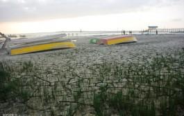 تکرار فاجعه دریاچه ارومیه در خلیج گرگان
