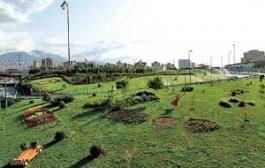 استفاده از ترکیبات سوپر جاذب برای آبیاری فضای سبز پایتخت