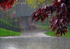در پی بارشهای سیل آسا، آب ١٠ نفر را برد