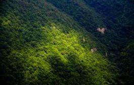 احتمالا توقف انتقال آب از جنگل ابر