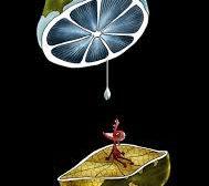 راهکار مدیریت مصرف آب شرب