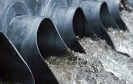 مارمولکها در منابع آب شرب مردم جاورده چه میکنند؟