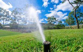 جداسازی ۲۹ فقره انشعاب آب فضای سبز در ملایر