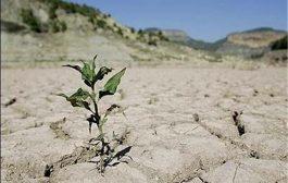 عطش در ۳۵ کیلومتری پایتخت/ساکنان شریف آباد با کمبود آب مواجه اند