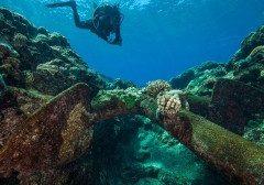 گورستان کشتی ها در جزایر مرجانی