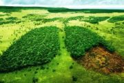 تغییر الگوی کشاورزی، بقای محیط زیست