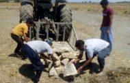 اقدام تحسین برانگیز بهره بردار غیر مجاز در تنگستان
