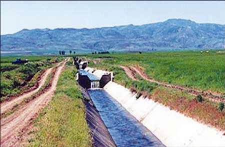 کشاورزان گلستانی۵۰درصدکشت خودباآب سطحی راکاهش دهندتادچارخسران درتابستان نشوند