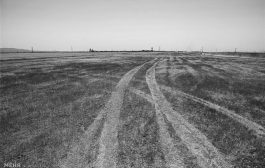 کم آبی و چشم انداز خالی شدن فلات مرکزی از سکنه/نابودی ۲۰ هزار رشته قنات