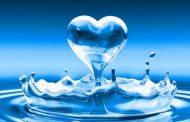 بررسی راهکارهای توسعه آبزی در منابع آب شیرین/ تسهیلسازی روند اخذ مجوز بهرهبرداری از آب