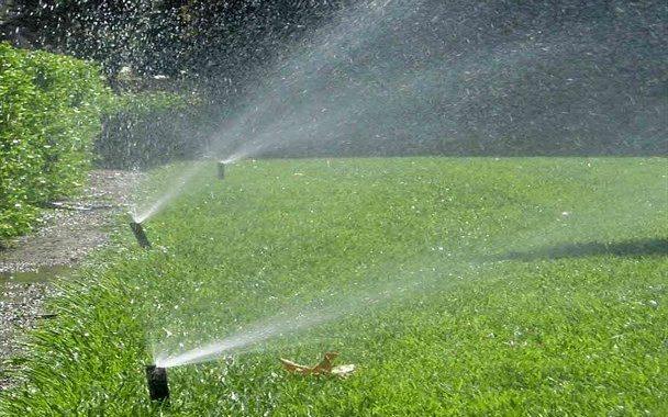 آبیاری فضای سبز مناطق پایین دست شهر یاسوج با پساب تصفیهخانه فاضلاب