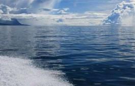 هشدار دانشمندان درباره اسیدی شدن آب دریاها