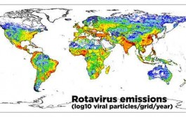 ردیابی ویروسهای انگلی در مسیرهای آبی جهان